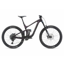GIANT REIGN ADVANCED PRO 29 1 2021